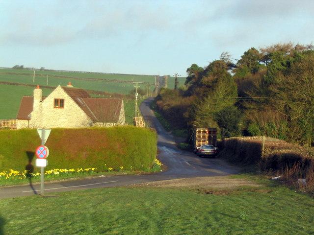 Roman Road near Winterbourne Steepleton