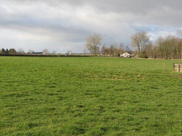 Pasture on the edge of Alyth