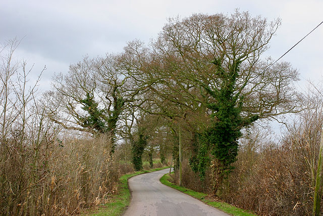 Road near East Green
