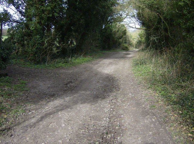 Bridleway junction near Kingsclere