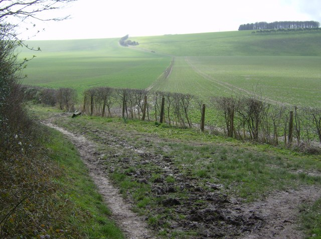 Towards the downs