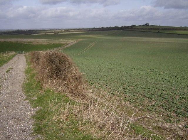 Farmland above Kingsclere