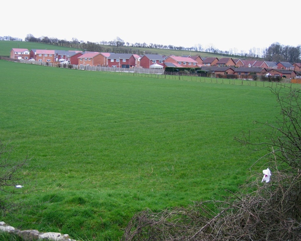 Housing Estate in Chirk