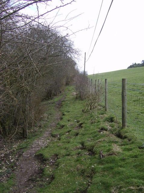 Footpath above Freemantle Park Down