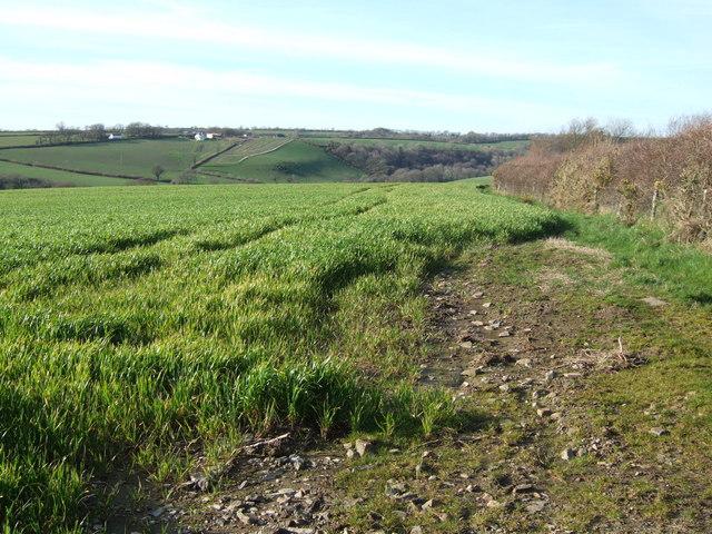 Field near Kale House Farm