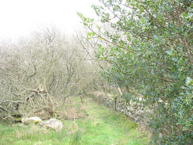 Well engineered path linking Saron village with Cefn Gwyn crossing