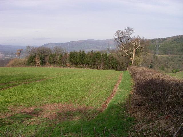 Towards Coldbrook Park