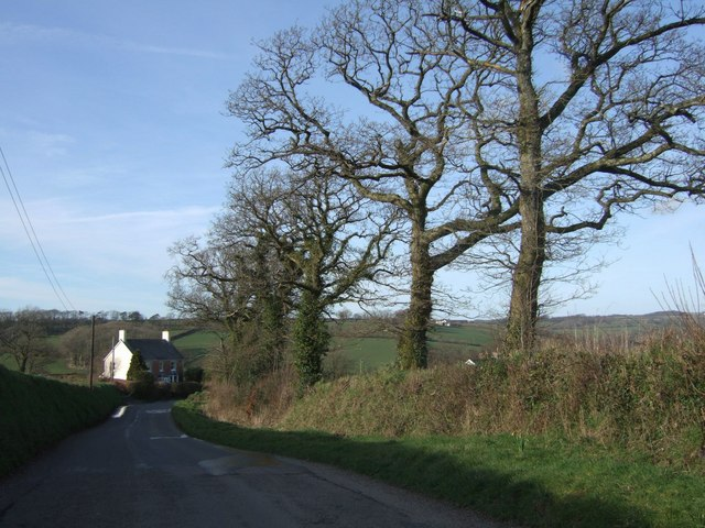 Lane north of Bratton Clovelly