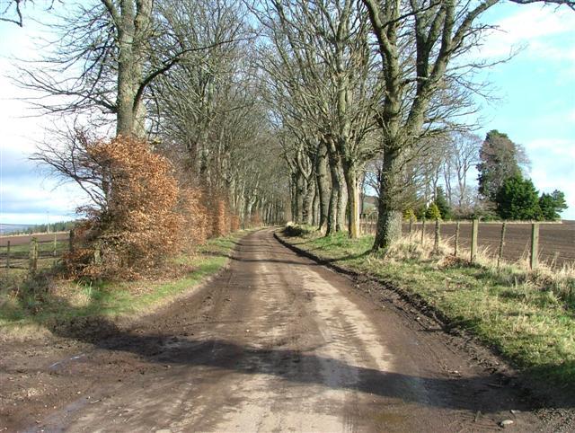Drumderfit Farm Road
