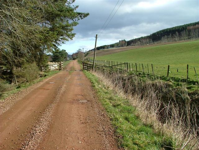 Road to Bayhead Farm