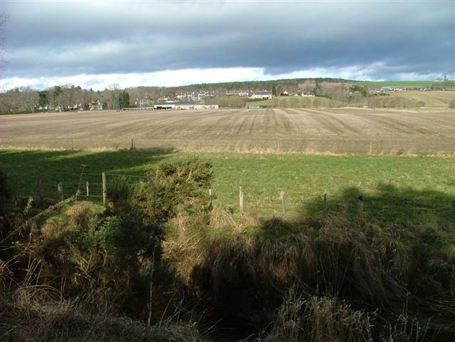 Fields beside Bayhead Wood