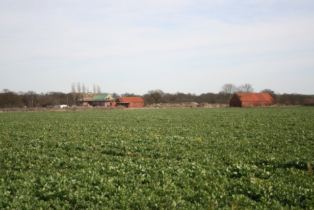 Doddington Farmland