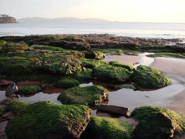 Green rocks and pools facing across Torbay