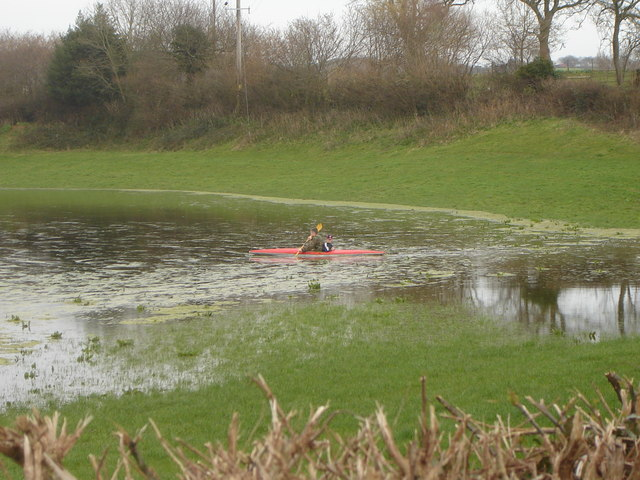 Flooded field - and opportunist