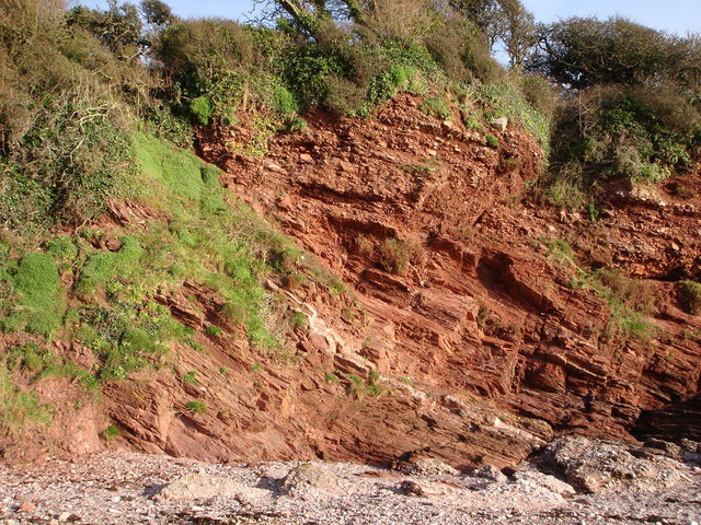 North End of Saltern Cove - Shale and sandstone
