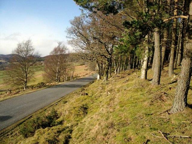 The Glen Prosen road