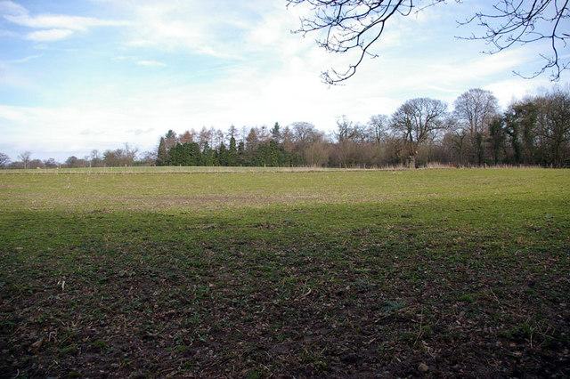 Bollington Fields