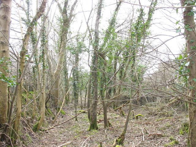 The former Dinorwig Quarry railway track at Gwyndy