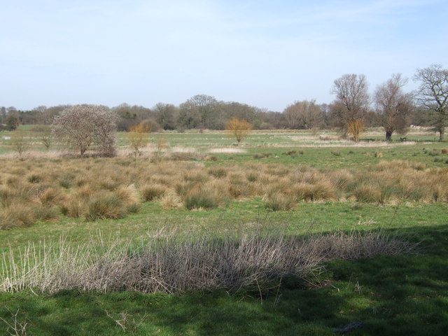 Across the Water Meadow