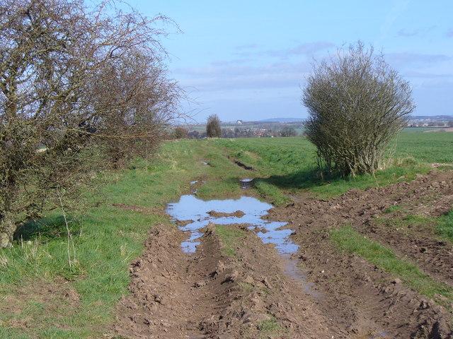Bridleway West of Addestone Farm