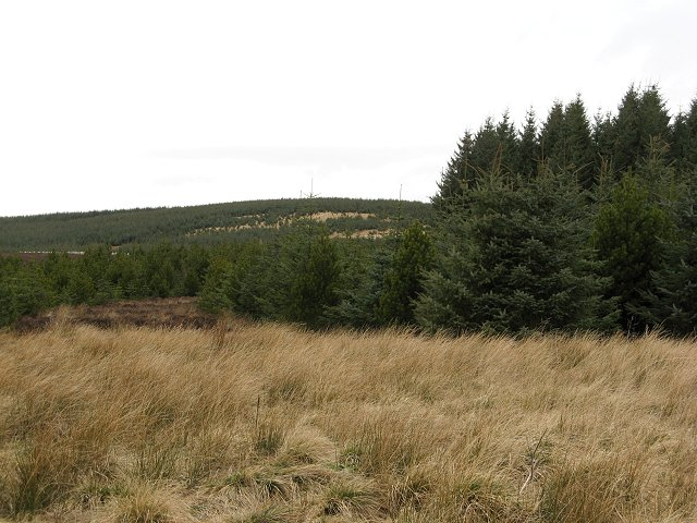 Hill of Kilry