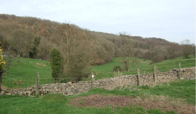 Kingscote Wood from Binley Farm