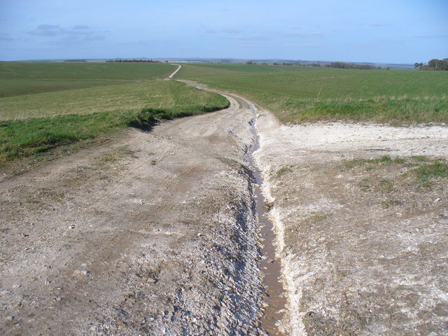Chalky Bridleway to Maddington Down