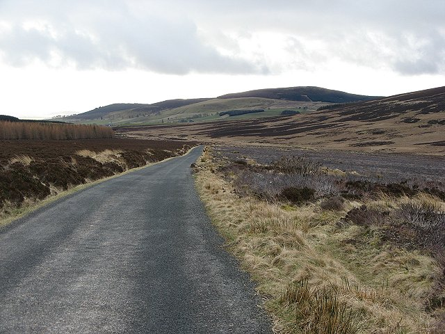 Road over the Forest of Alyth