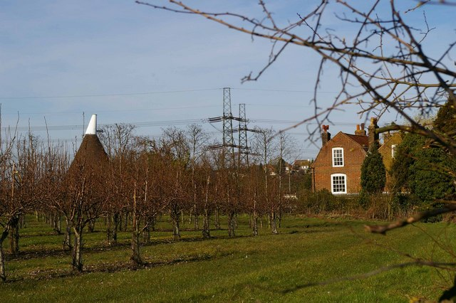Orchard and Old Oast