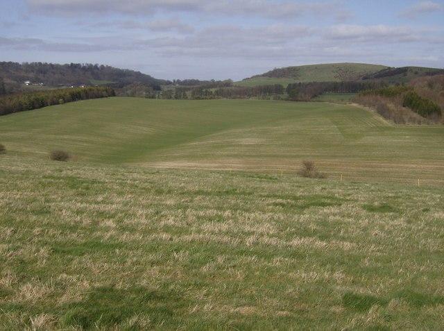 Lower Woodcott Down field system
