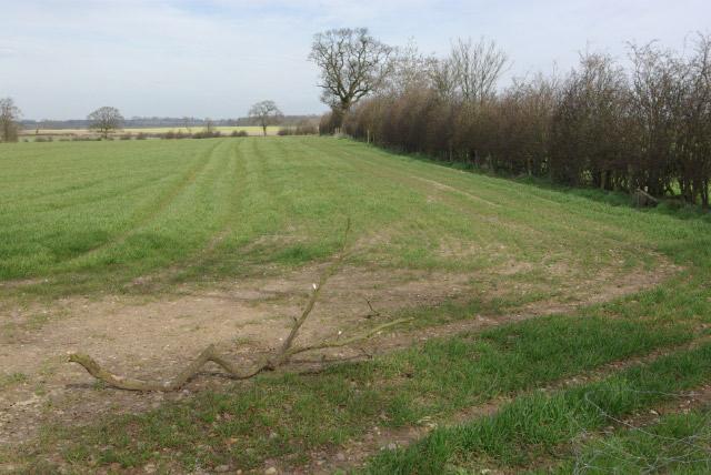 Farmland near Pinwall