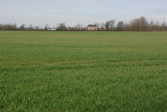 Benn Hills Farm