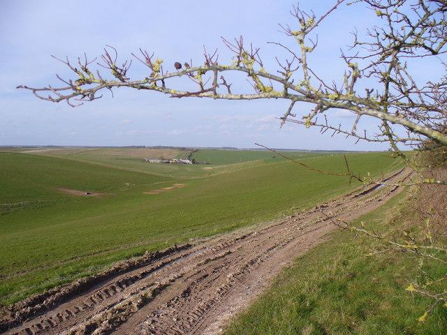 Dry Valley South of Maddington Farm