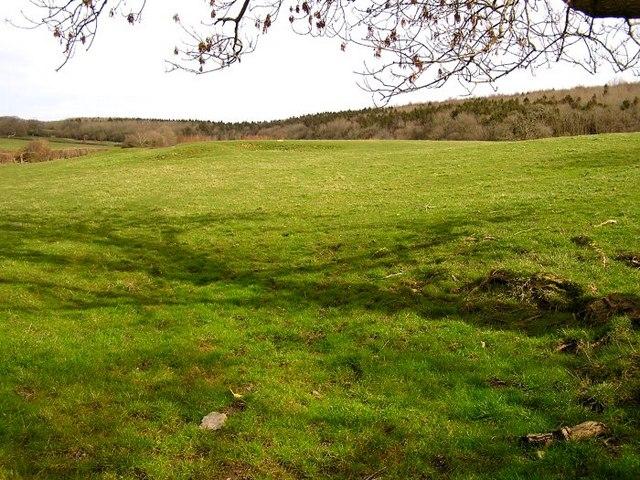 Farmland nr St Hilary