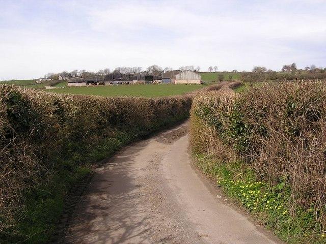 Cross Barn Farm
