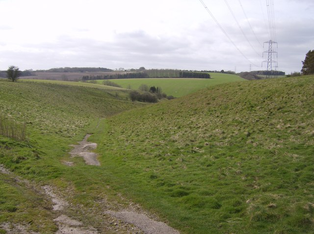 Combe off Great Litchfield Down