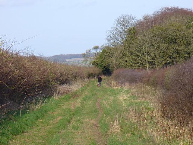 Bridleway Descending to Shrewton