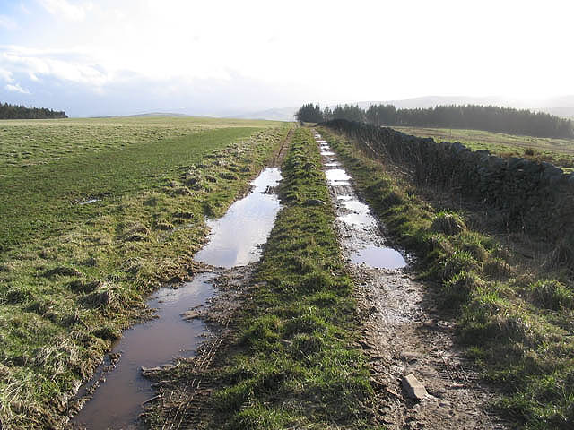 A farm track on Scroof Hill