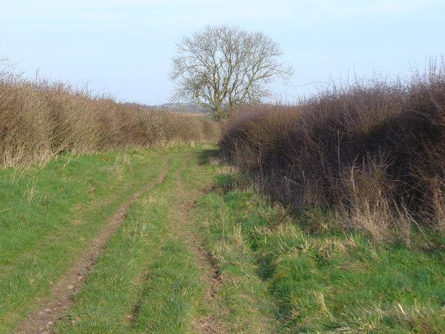 Bridleway North of Barleycroft Farm
