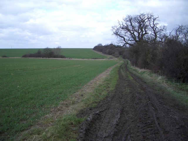 The Three Shire Bridleway South of Yelden