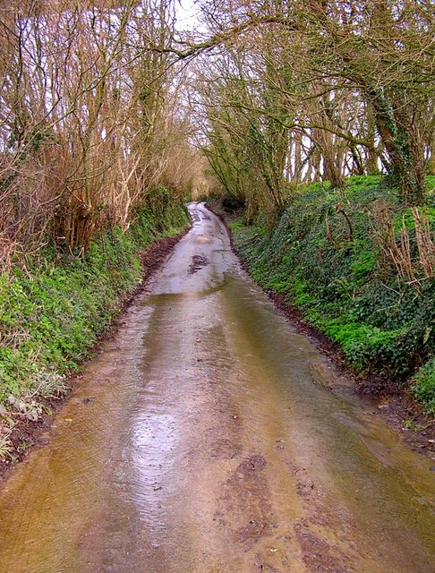 Watery country lane