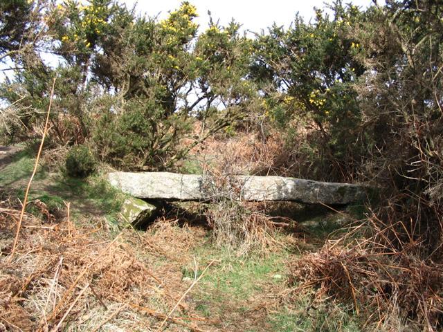 Footbridge over Devonport Leat