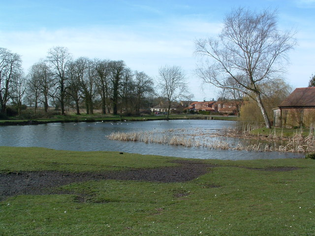 Gt. Massingham Pond