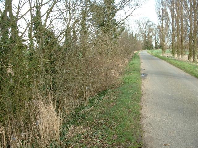 Park Road, near Tydd St Giles