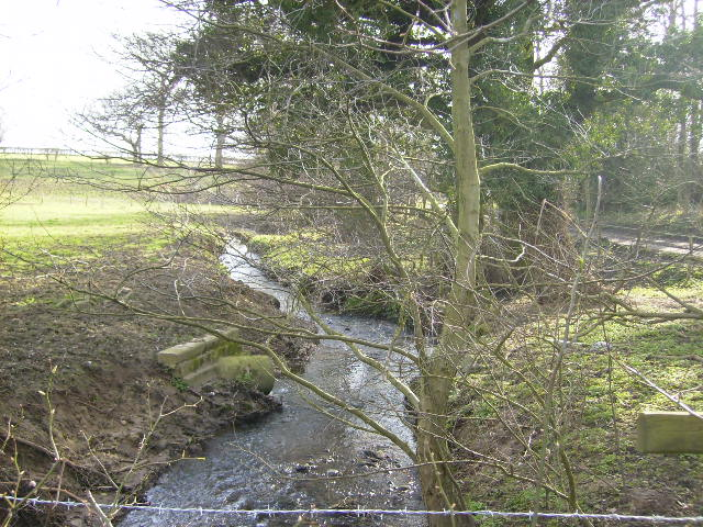 Twattleton Beck near to Angram Grange
