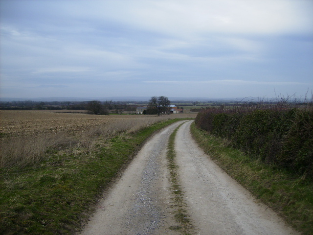 Track to Wandale