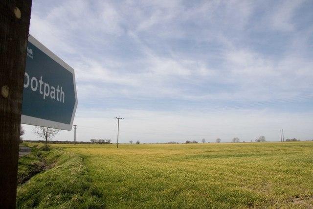 Suffolk Field