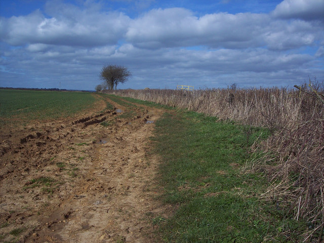 Field edge bridleway to Toogoods Farm from White Way Lane
