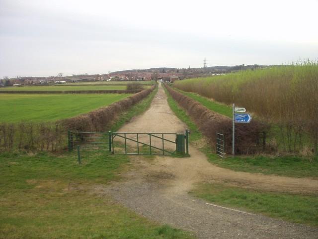 Lane to Harlington