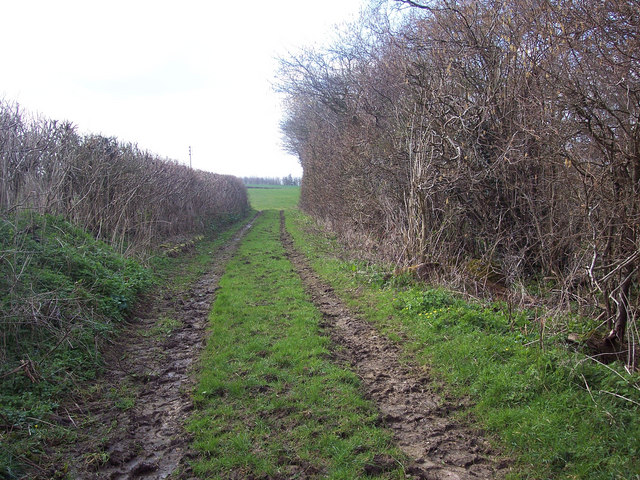 Footpath to Hinton St Mary.